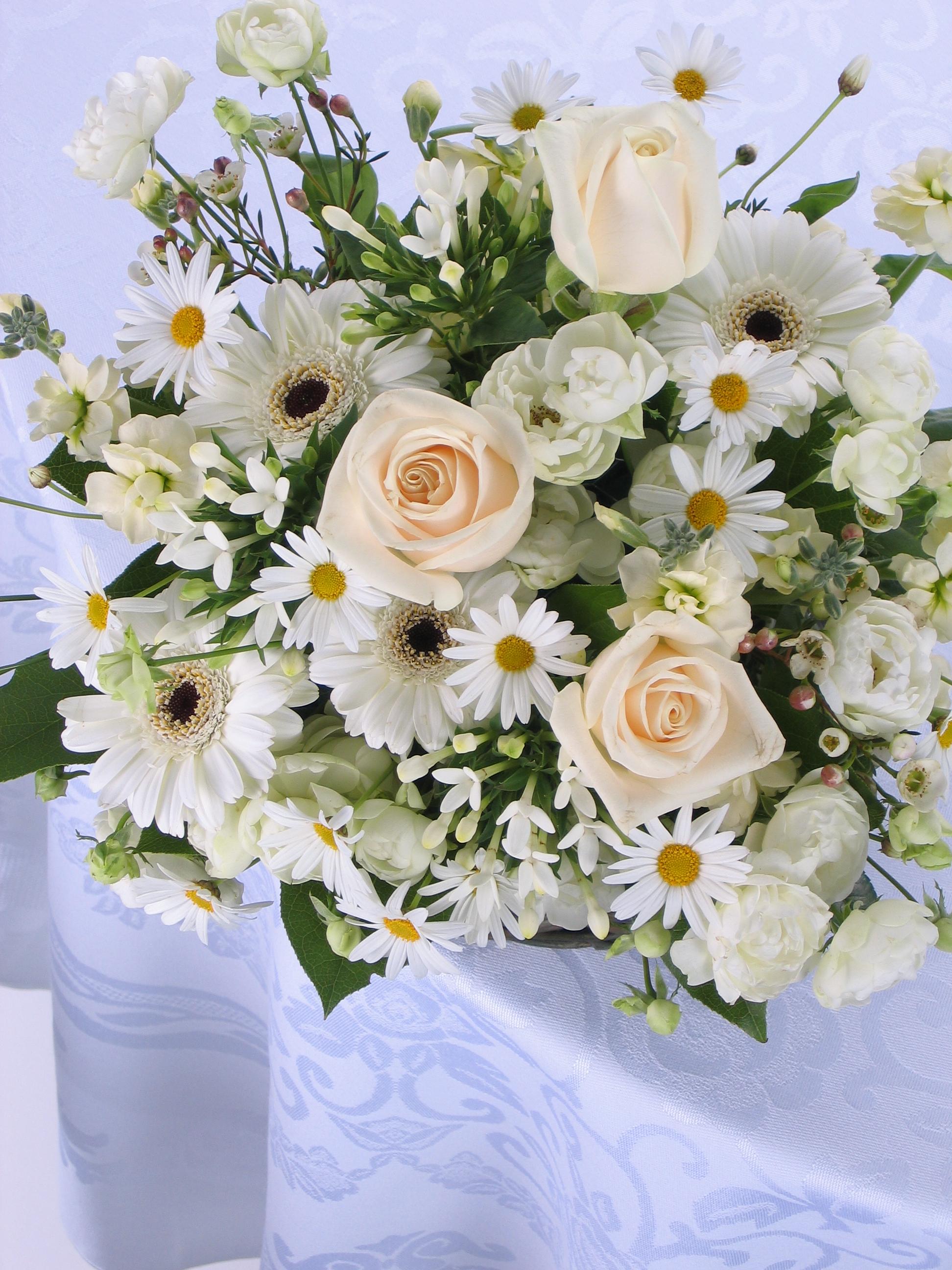 Белые розы на день рождения открытка 7418 1